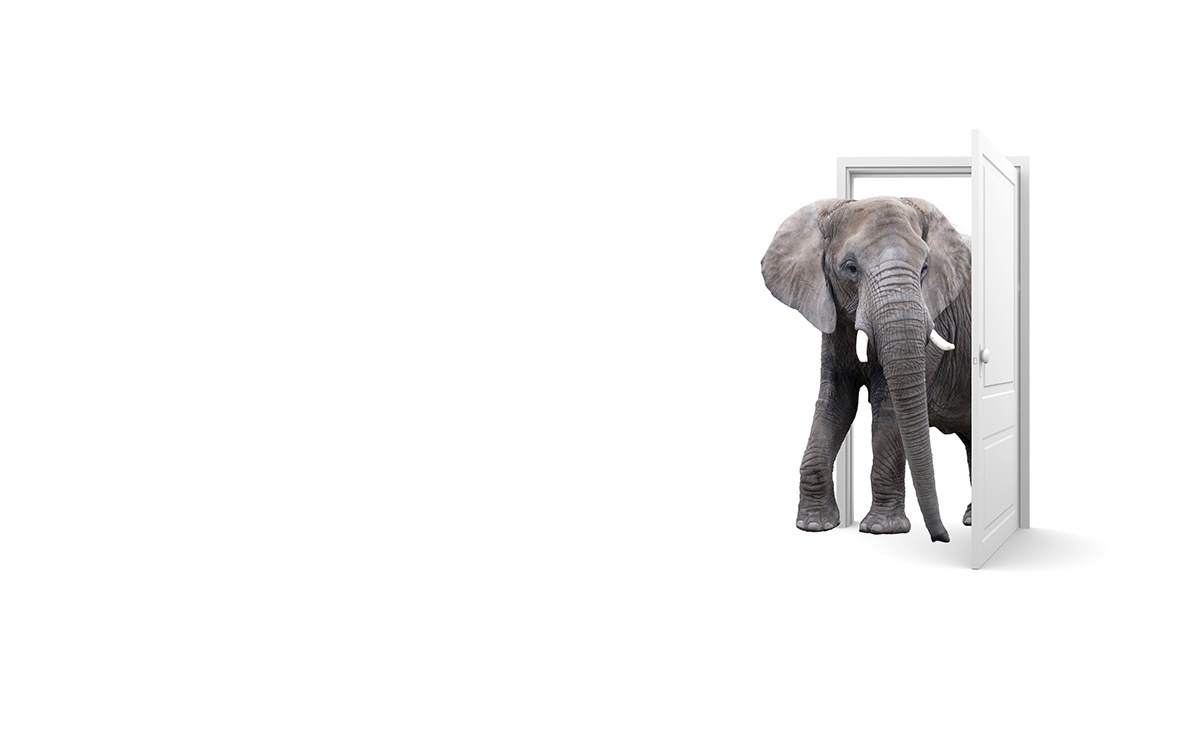 the elephant in the room how to really answer the weakness question however a little insight and the right approach the question what is your greatest weakness can become one of your greatest allies among the list